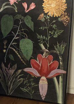Black Botanical Framed Canvas Art Print for Sale in Smithfield,  VA