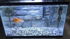 Fish tank 30 gallons for Sale in Brooklyn, NY