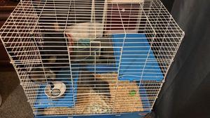 Kaytee multilevel ferret home for Sale in Seattle, WA