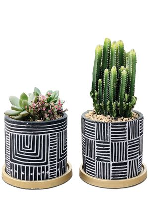 """4.7"""" Planter Pots with Drainage Holes and Saucers, Flower Pots Succulent Cactus Container Bonsai Indoor Outdoor, Pack of 2 - Plants Not Included for Sale in Temple City, CA"""