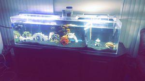 120g aquarium for Sale in Perris, CA