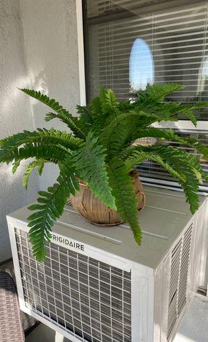 Fake plants 10 for both for Sale in San Bernardino, CA