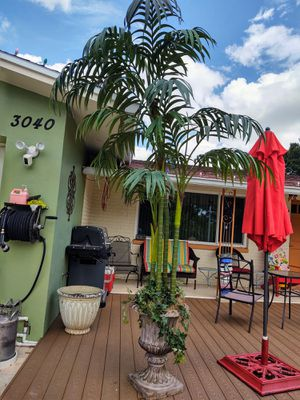 HUGE 10 ft artificial Palm Tree for Sale in FL, US