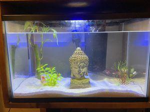 5 gallon aquarium (inc. filter and heater) for Sale in Hillsboro, OR