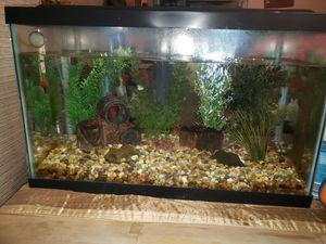 COMPLETE 10 GALLON FISH TANK for Sale in Antioch, CA