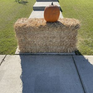 Free Bail of Hay and Pumpkin for Sale in Bakersfield, CA