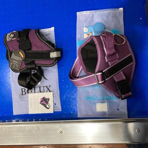2 Dog Collars Size M for Sale in Sacramento, CA