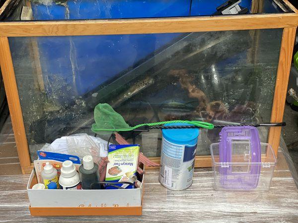 30 gallon fish tank/aquarium/stand & accessories