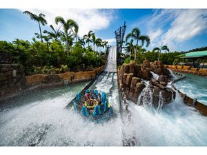 SeaWorld tickets (pay after entry) for Sale in Miami, FL