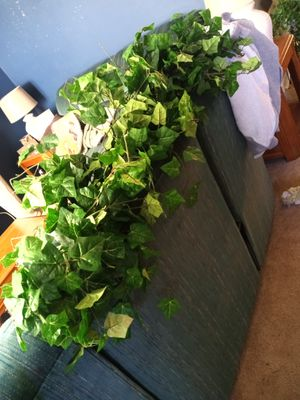 5 fake ivy plants for $20 for Sale in Cartersville, GA