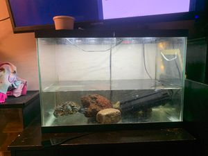 Reptile tanks for Sale in Albuquerque, NM