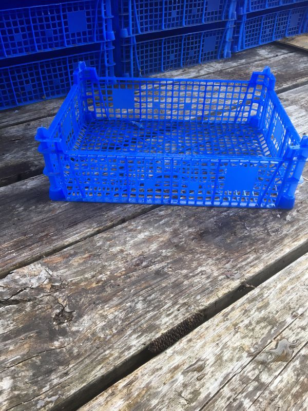 Plastic Pallets and Crates