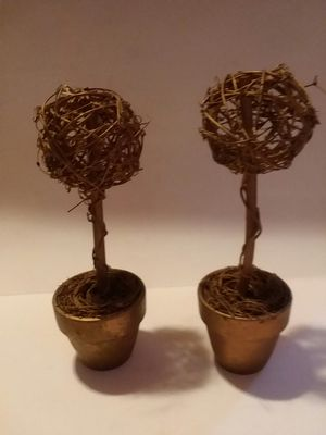 "GOLD POTTED NESTED ""6"" PLANTS for Sale in Wilmington, DE"