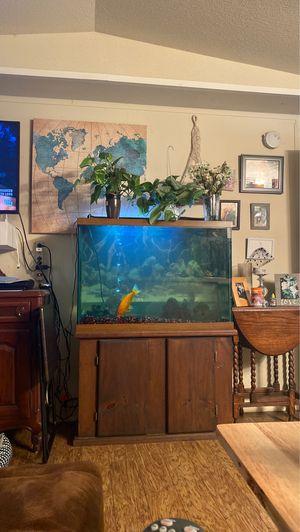 55 gallon fish tank aquarium for Sale in Arlington, TX
