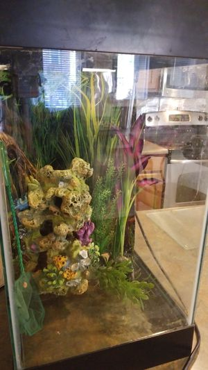 16 gallon fish tank 140 for Sale in Tolleson, AZ