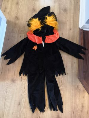 Halloween costume 2-4 for Sale in Oak Forest, IL