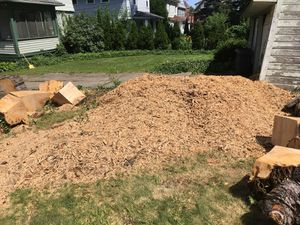 Free mulch wood chips from tree stump grinding for Sale in Cleveland, OH