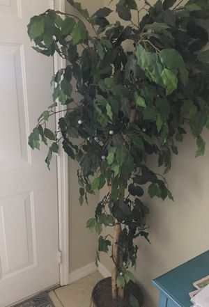 (2) Artificial Trees/ Plants for Sale in Orlando, FL
