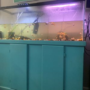 Fish Tank And Stand for Sale in Fort Worth, TX