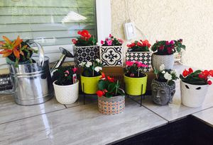 Flower pots for Sale in Fresno, CA