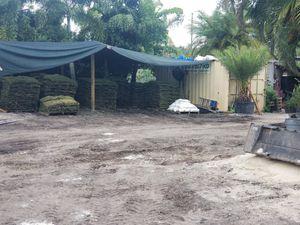 Sandbags,Sod,Debris Disposal lic.Broward County Tree Trimmers for Sale in Fort Lauderdale, FL