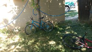 Free spirit for Sale in Boise, ID