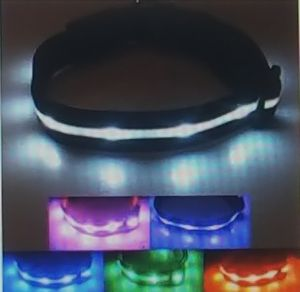 Luminous dog collar safety LED USB rechargeable with water resistant flashing lights. for Sale in Washington, DC