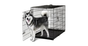 X-large dog crate for Sale in Philadelphia, PA