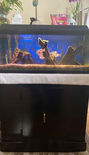 12 Gallon Fish tank for Sale in Colma, CA