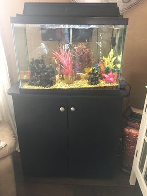 30 Gallon Fish Tank + Stand + Some Fish Supplies for Sale in Mount Laurel Township, NJ