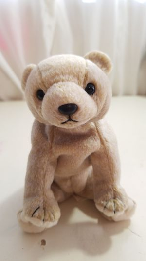 Beanie Babie - Almond 1999 for Sale in Tampa, FL