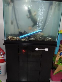 56 gallon is in very good condition bring fluval filter 306 rocks for Sale in Lutz,  FL