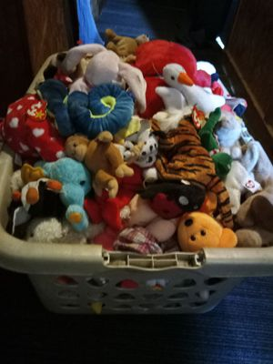 Beanie babies for Sale in Wahneta, FL