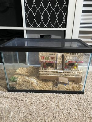 10 gallons fish tank with top for Sale in Marietta, GA