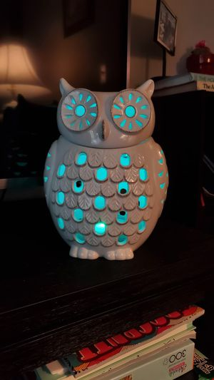 PartyLite Snow Owl for Sale in Warwick, RI