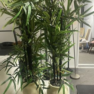 Set of 2 - Tall Fake Plants for Sale in Marina del Rey, CA