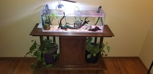 Aquamaxx 20g long and custom stand for Sale in Portland, OR