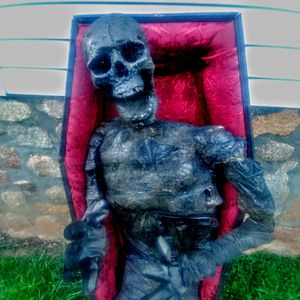 Lifesize Skeleton and coffin for Sale in Amherst, VA