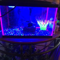 Fish Tank With Extra Things Inside for Sale in Phoenix,  AZ