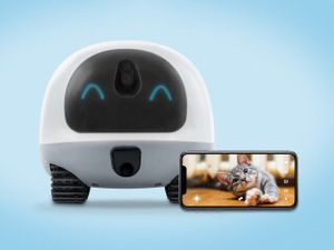 VAVA Pet Cam for Sale in Westchase, FL