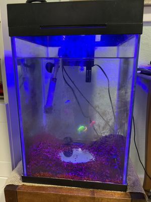 Fish tank with everything you need including 5 beautiful glofish for Sale in Redmond, WA