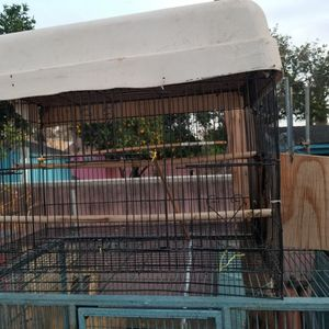Bird Cage With Nest for Sale in Los Angeles, CA