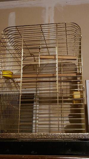 Large Bird Cage for Sale in Denver, CO
