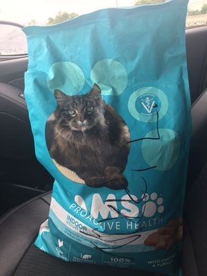 IAMS CAT FOOD. 16Ib BAG for Sale in Capitol Heights, MD
