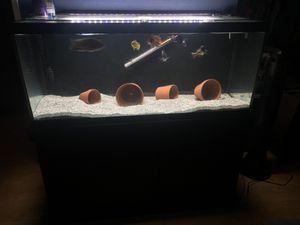 75 Gallon Aquarium for Sale in Hesperia, CA