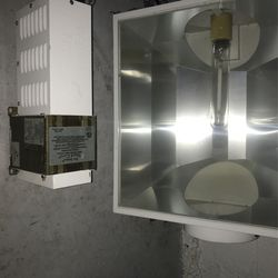 600W grow light for Sale in Columbus,  OH