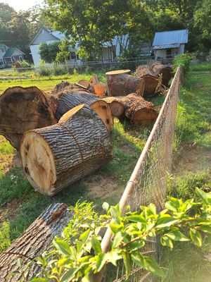 FREE FIRE WOOD for Sale in Easley, SC