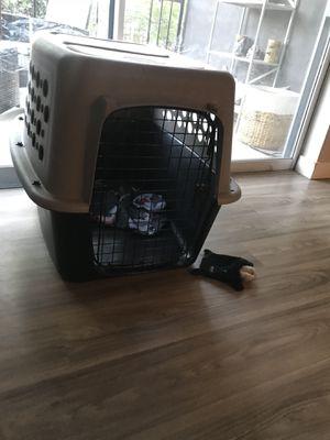 Medium size dog crate for Sale in Denver, CO