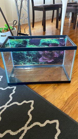 10 gallon fish/turtle tank for Sale in Chicago, IL