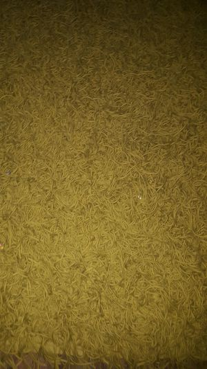4x6 Apple Green Crate and Barrel shag area rug for Sale in Sanford, NC